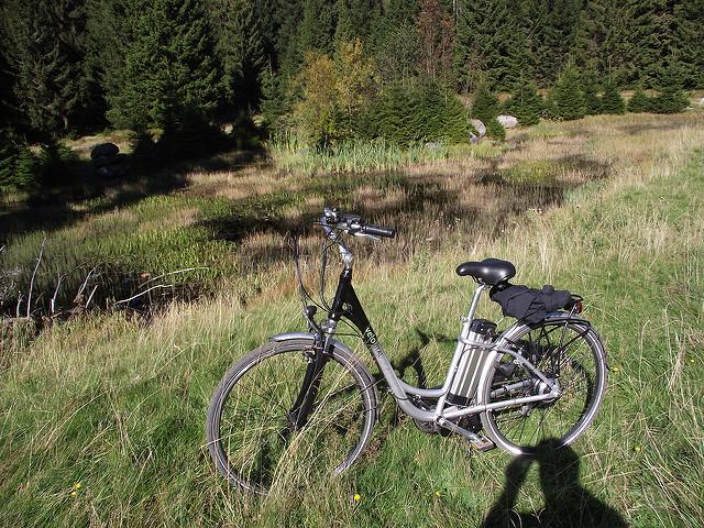 חשמוניים. צילום: eBike Harz, רשיון: cc-by